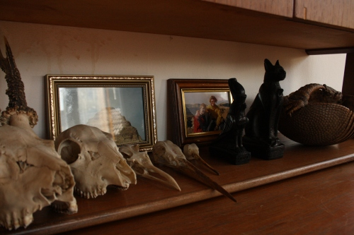 "My boyfriend's collection of animal skulls which he has been so kind to let me use. I also keep some some figures and a photo from my trip to Egypt (around 2003-ish) and a photo of me and my ""foster grandmother"" from our trip to Tenerife (2002-ish)."